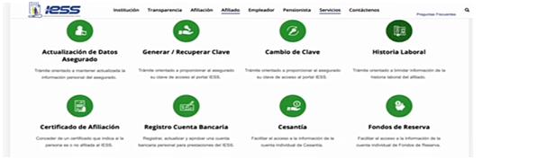 Figura 1. Portal web del Instituto Ecuatoriano de Seguridad Social (IESS)